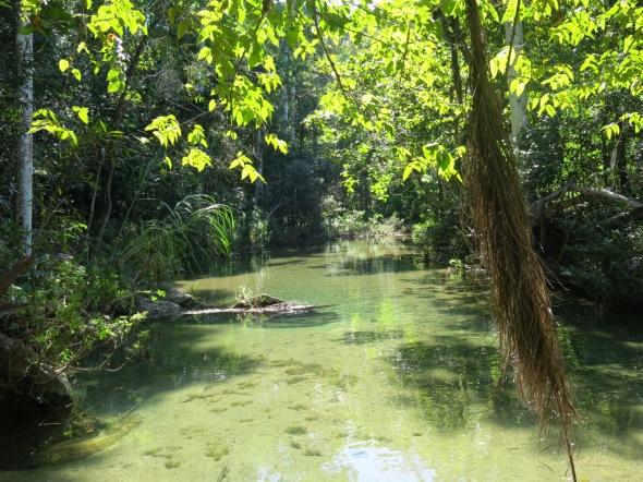 Rio El Cubano